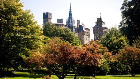 Bute Park, behind Cardiff Castle, is one of the best places to go for a walk in Cardiff