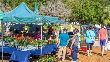 Englewood Farmers Market even sells straight-from-the-ocean seafood and ready-to-plant seedlings