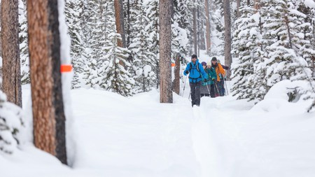 Cross-country skiing is a great way to take in your beautiful surrounds at a slower pace