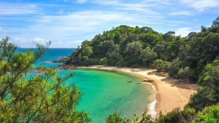 The idyllic Whale Bay on the Tutukaka Coast in the North Island