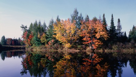 Maine's fall finery will not disappoint