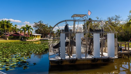 There's so much to do in the Everglades National Park, Florida