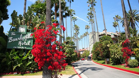 Take your vacation to the next level and relax in one of LA's most luxurious hotels, the Beverly Hills Hotel