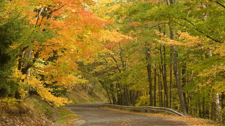 Rib Mountain State Park is an excellent spot to take in Wisconsin's autumnal colors