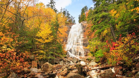 Explore Crawford Notch State Park's fall beauty via hiking