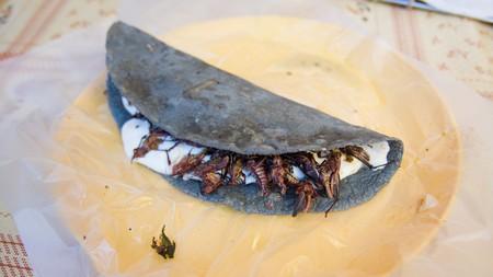 Blue corn empanada with fried grasshoppers, anyone?