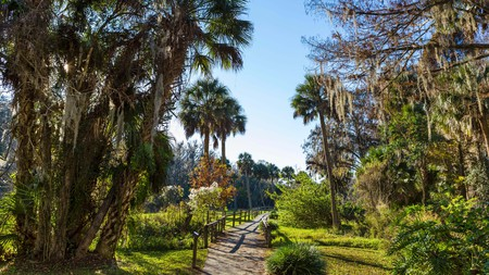 Silver Springs is just one of the spectacular natural attractions close to Ocala