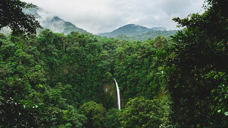 Costa Rica's unique natural beauty makes it well worth a visit