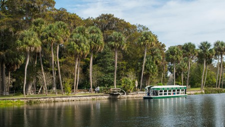 Silver Springs State Park is within easy reach of some of the area's comfortable hotels
