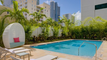 You can lounge by the pool under the Florida sun when you stay in the best budget hotels in Downtown Miami