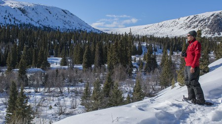 Strap on a pair of snowshoes and traverse across the Yukon's snowy terrain