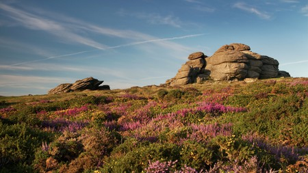 Devon is home to some of the most beautiful countryside landscapes in the UK