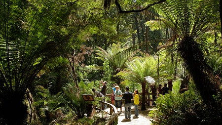 Get out of the city and reconnect with the great outdoors by exploring the natural wonders in Victoria