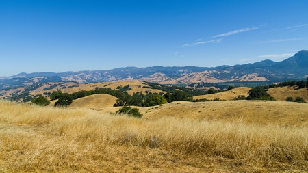 While less famous than its neighbor Napa Valley, Sonoma County also possesses excellent wineries worth exploring