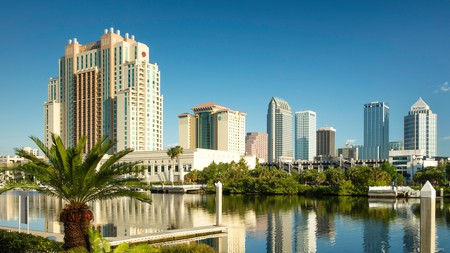 Enjoy the view of the Tampa skyline in Florida, USA