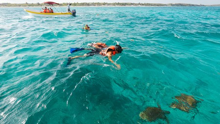 Go snorkeling with turtles on Tulum's beautiful coral reefs