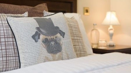 The pet-friendly hotels in Cornwall offer acres of grounds, beds, bowls and treats for your furry companion