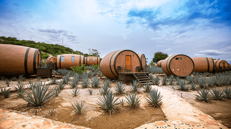 Matices Hotel de Barricas sits in In the heart of Jalisco's tequila country