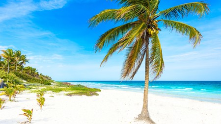 An idyllic setting, between lush jungle and clear Caribbean, makes Tulum, in Mexico, a popular destination with some excellent hotels