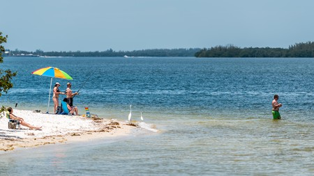 Causeway beach, on Sanibel Island, is worth a visit for fishing or just to unwind