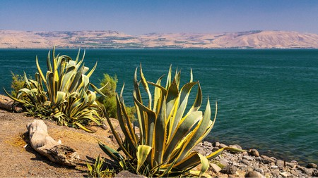 The Sea of Galilee from Capernaum, Israel