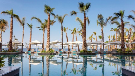 Palm trees line the pool at the Amavi Hotel in Paphos