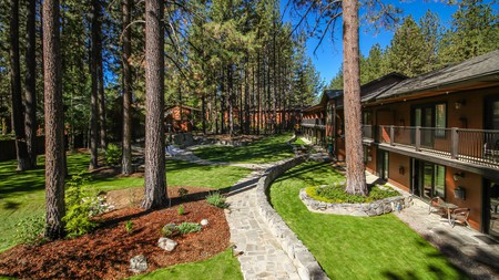Bring your furry friend on a getaway to Lake Tahoe with a stay at one of these pet-friendly hotels