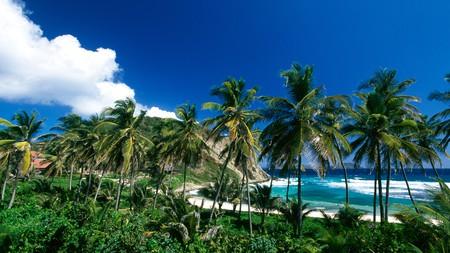 Beach on Peter Island British Virgin Islands Caribbean