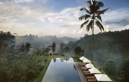 The Pool at the Alila Hotel in Ubud, Indonesia, will wow you with spectacular views of the surrounding greenery