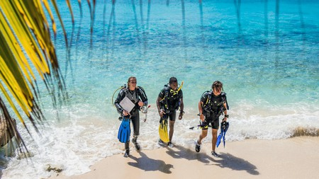 Bonaire's warm crystalline waters lure active travelers for diving, windsurfing and more
