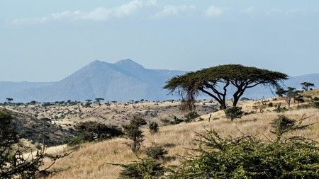 Explore all that Kenya has to offer