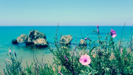 Sicily's wild, rugged coast