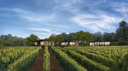 The Montage Healdsburg in Healdsburg, California, has its own vineyard