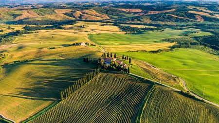 The stunning Tuscan landscape is just one reason to explore the region