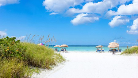 Treat yourself to a Florida vacation at an affordable Sarasota hotel