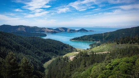 Picton, New Zealand, will wow you with its mix of forested slopes and blue water