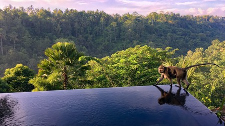 Regal villa rooms, a soothing spa and smiley service are all on the menu at the Hanging Gardens of Bali