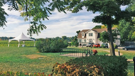 Surround yourself with 12 acres (5ha) of vineyards