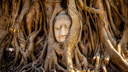 The Buddha's face can be seen in the roots of a banyan tree in Wat Phra Mahthat, Ayutthaya Historical Park