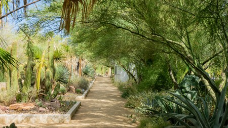 Botanical Garden of Springs Preserve at Las Vegas, Nevada