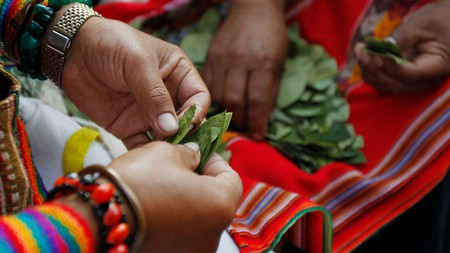 Coca is illegal outside of the Andes – but if you're planning a trip to this part of the world, discover the amazing heath benefits known by locals for millennia