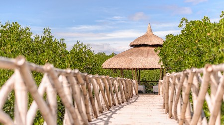 North Zen Villas in the Philippines is located in a mangrove forest