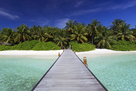 With stunning sights above and below the waves, pristine beaches and unforgettable wildlife, the islands of Asia really are paradise