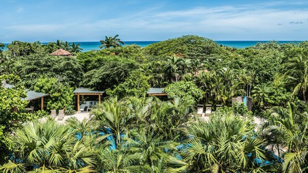 Book a room at Cala Luna boutique hotel for a beachside relax wrapped in jungle