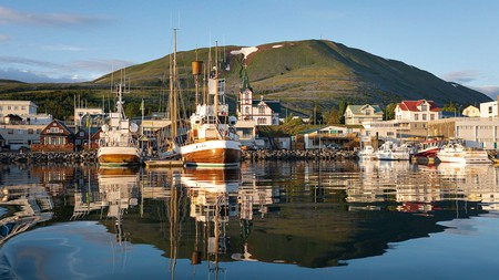 Húsavík harbour, where humpback whales can be spotted in season