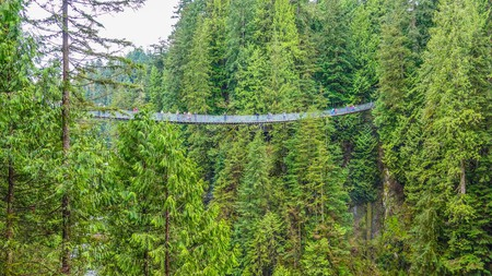 Walk among the trees via the Capilano Suspension Bridge in Vancouver, British Columbia