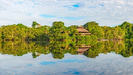 Immerse yourself in the most biodiverse region on Earth with a stay in an Amazonian jungle lodge
