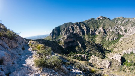 Keep an eye out for fossils in the Guadalupe Mountains National Park