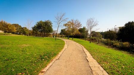 Wohl Rose Park (Hebrew: Gan HaVradim) in Givat Ram, Jerusalem, Israel