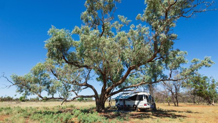 Connect with nature on a camping trip to Charlotte Plains in Queensland, Australia